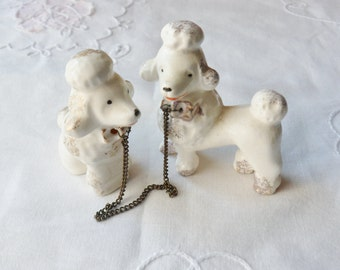 Pair of Chained Poodles, Miniature French Poodles