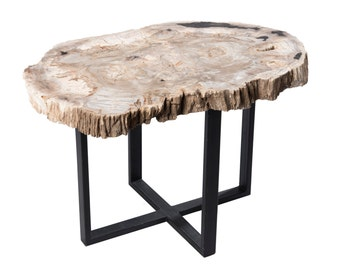 Petrified Wood Upper West Side Table