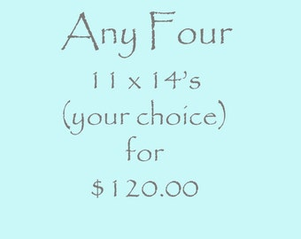 Discount for Any Four 11 x 14 Archival Fine Art Photographs Your Choice