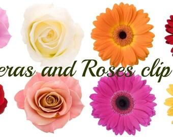 Instant download digital clip art - 8 high resolution flower photographic clip art images - full color