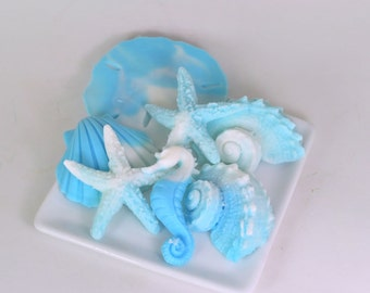 Sea Shell Soap  -Beach House Soap, Beach Gifts, Vacation House