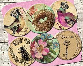 INSTAND DIGITAL DOWNLOAD - Victorian Bird Queens Vintage French Wallpaper - Jewelry Collage Sheet - 1 Inch Circles - Necklaces Pins Magnets