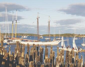 Sail Boats Photography Portland Maine Harbor Art New England Prints Nautical Vintage style Wall Art  Blue White Decor 8x10 Fine Art Photos