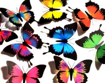 3D Butterflies - ULYSSES Mixed Colours - Girls Bedroom, Nursery, Baby, Gift, Craft, Wall Decor, Art, Mirror, Window, Kitchen