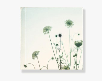 Flower canvas art, Queen Annes Lace photo canvas, flower photo, shabby chic decor, nature photography, large wall art - As the Sun Set
