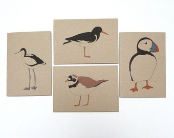 Coastal bird cards - individual or set - bird cards / seabird cards / puffin / avocet / oystercatcher / plover - eco friendly / recycled