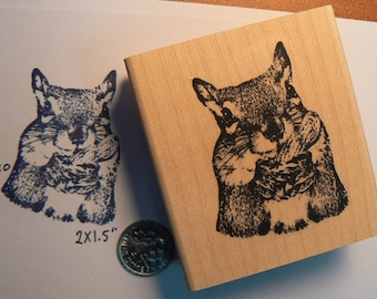 squirrel eating a peanut rubber stamp WM P10