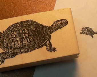 P42 Turtle rubber stamp
