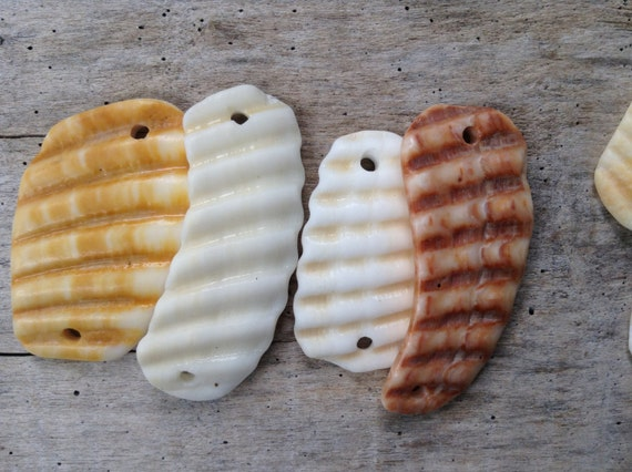 BEACH TREASURES...10 shell beads - jewelry making supplies - fossil rock - organic natural