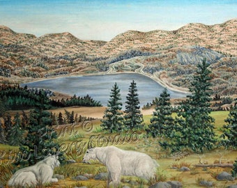 Rocky Mountain Goat Pine Trees Lake Wildlife wild animals ACEO mini art PRINT Kim Loberg Nebraska Artist EBSQ
