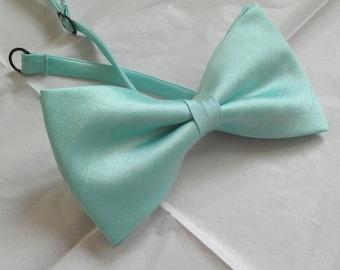 Agnes mint green dupioni silk bow tie