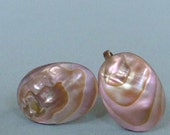 Oval Abalone Earrings