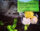 Economy Herb Kit~Parsley, Basil, and Cilantro~Beginner Chef Kit