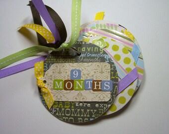 Pregnancy Mini Scrapbook Album, 9 months album, Pregnant scrapbook, pregnancy photo album, Pregnancy brag book, Expecting Album