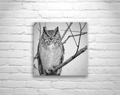 Owl Print, Black and White, Owl Picture, Great Horned Owl, Owl Art, Bird Art, 8 x 8, 10 x 10, 12 x 12, Square Print, Square Art