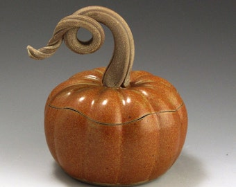 Pumpkin Jar, Handmade, Pottery, Stoneware, John Bauman,