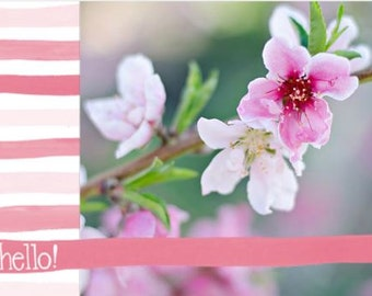 Hello Spring Postcard with envelope - Set of 5