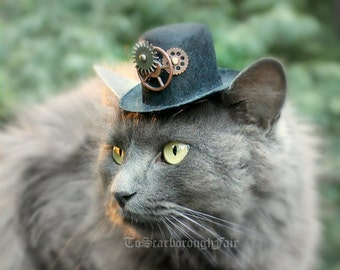 Cat Hat Steampunk Inspired - Voyager Through Time - Cat Halloween Costume - Pet Costume - Cat Photo Prop