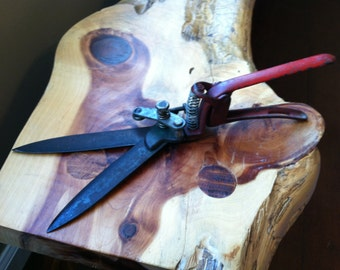 Vintage Garden Shears / Clippers