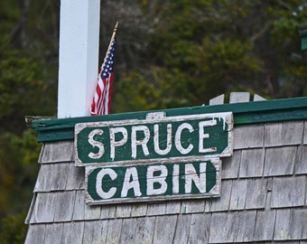 Spruce Cabin Ocean Point Maine - 4 x 6 photograph