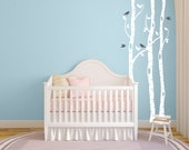 Birch tree wall decal for nursery and home DB353