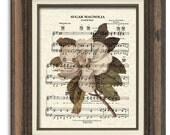 Sugar Magnolia Sheet Music Art Print, Grateful Dead Song Art Print, Southern Magnolia