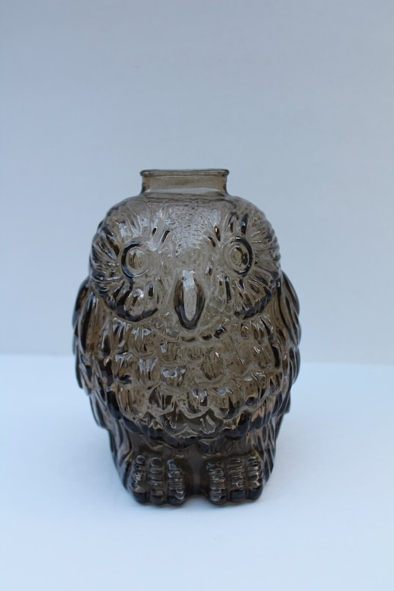 70s wise old owl bank glass piggy bank by veesvintage on etsy - Wise old owl glass bank ...