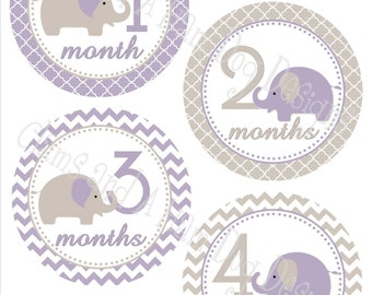 Elephant Monthly Milestone Stickers- Girls monthly stickers- Baby month stickers- Elephant Baby Shower Decor- optional Gerber ONESIE- GRL347