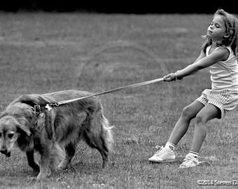 Girl Walking Dog, Golden Retreiver, Dog Art