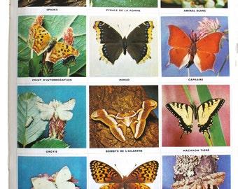 Vintage Children Stamp Book Butterflies 70's - Encyclopédie par le timbre Les Papillons