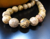 Picture Jasper Necklace, Faceted Picture Jasper Round Beads and Gold Filled Round Bead, Picture Jasper Necklace, Picture Jasper Jewelry