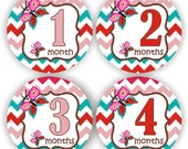 Baby Stickers - Baby Month Stickers - Baby Girl Monthly Stickers - Baby Shower Gift - Buterfly Baby Month Stickers
