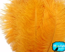"Small ostrich feathers, 10 Pieces - 8-10"" GOLDEN YELLOW Ostrich Dyed Drabs Feathers : 246"