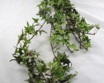 Silk ivy bush bridal bouquet base 5 point leaf ivy