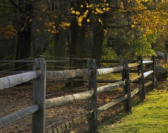 Country fence photograph - New England fine art print, fall evening photograph, landscape, green, gray, yellow, country wall art