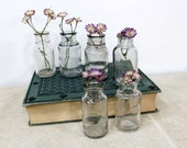 RESERVED for Amy - 6 Round Green Apothecary Bottles