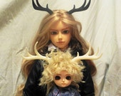 4 Point Stag Antler for BJD, Cosplay, Halloween, One Pair, Color Choice.