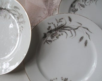 Antique Charles Field Haviland Pink and Gray  Dinner Plates Set of Four