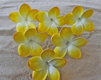 DIY 6 X Plumeria Cake Flowers