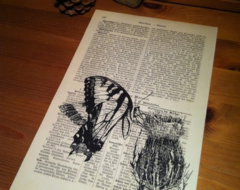 Butterfly on Thistle Art Print on Antique 1896 Dictionary Book Page