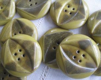 Vintage Cellulose Coat Buttons  Set of 10 SALE