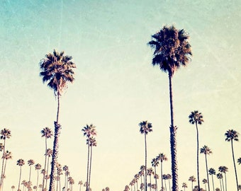 """Palm Tree Photography, California, Landscape, Ombre, Teal Green Yellow, Palm Tree Wall Art, Nature Photography """"LA Dreaming"""""""