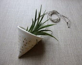Golden Dash Porcelain Horn Planter