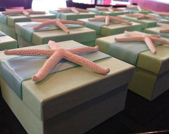 Favor Box with Starfish