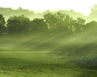 Sunshine Rays Foggy Morning Green Landscape Wall Art Home Decor Digital Download Fine Art Photography