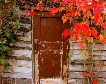 The Door - 8x10 photo