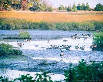Manomet Bluffs Coastal Photography Plymouth Massachusetts