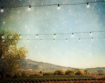 vineyard decor - wine country - california wall art - sonoma county print