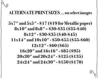 ALTERNATE Print Sizes
