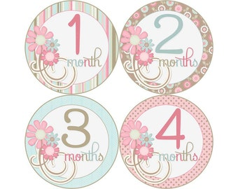 Baby Month Stickers, Monthly Baby Stickers, Monthly Photo Stickers, Girls First Year Photo Props, Baby Shower Gift, Flowers (G027)